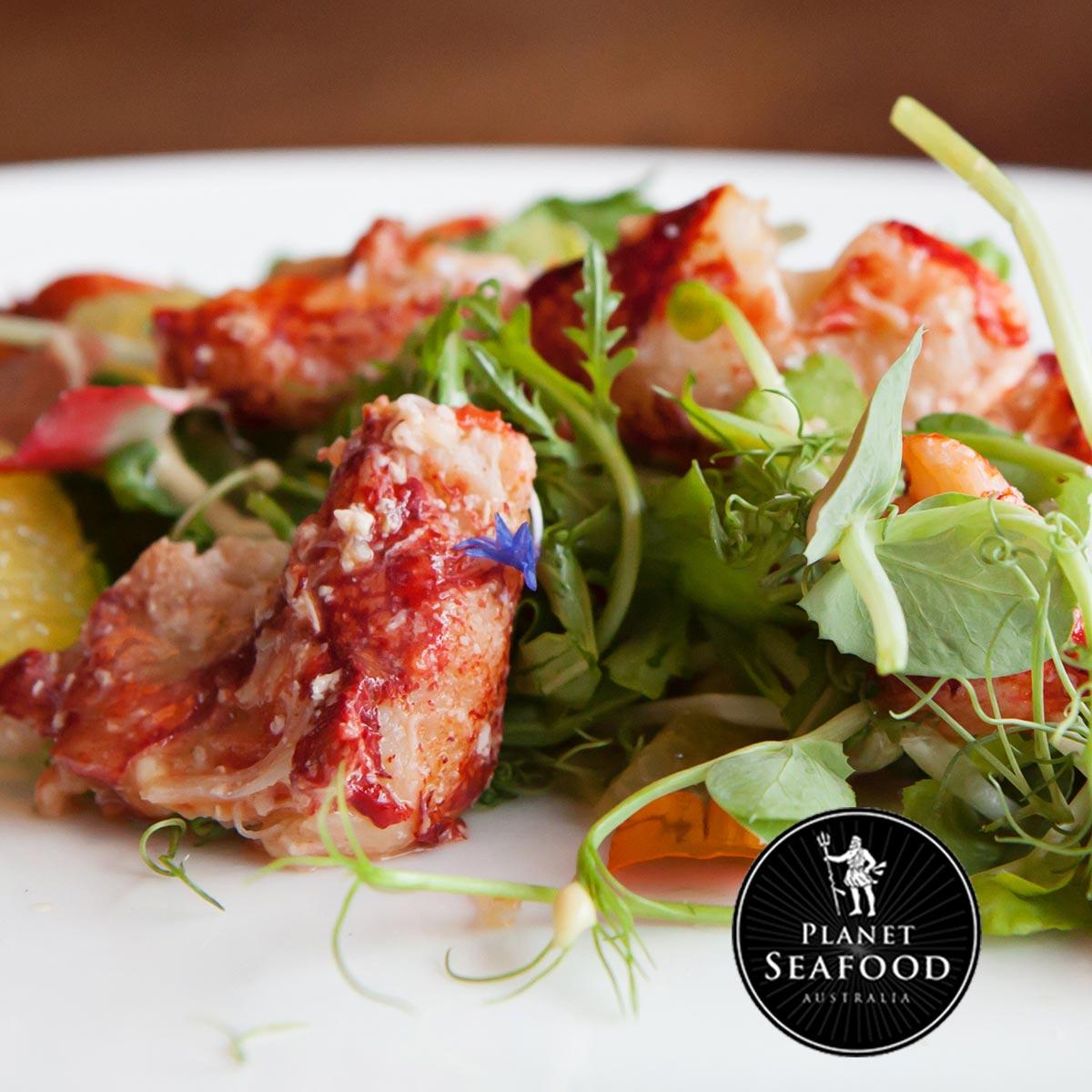Planet Seafood Lobster Salad 379255760 Web