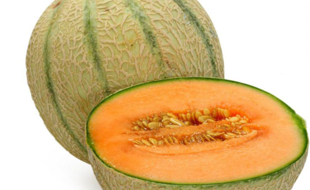 Rockmelon Indian Cream1.jpg