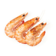 cooked prawns local food market co © 2020 9657 1