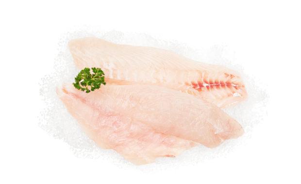 Planet Seafood Snapper Fillets Nicholas Duell © 2020 Dsc 4636