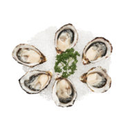 Planet Seafood Oysters Coffin Bay South Australia Nicholas Duell © 2020 Dsc 4667