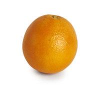 orange © seedling commerce.jpg
