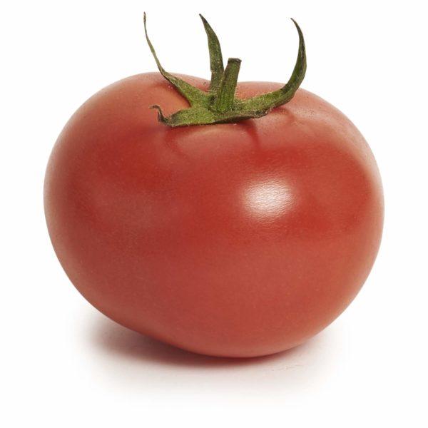 Adelaide Tomato Seedlingcommerce © 2018 8011.jpg