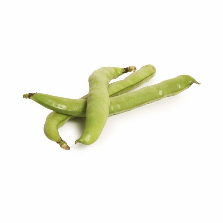 Broad Beans Seedlingcommerce © 2018 8146.jpg