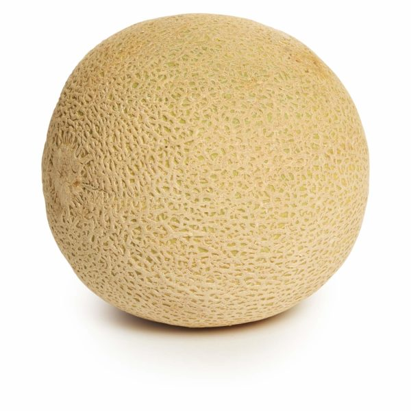 Cantaloupe Whole Seedlingcommerce © 2018 8059.jpg