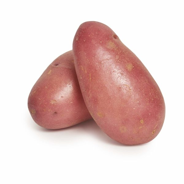 Desiree Potato Seedlingcommerce © 2018 7858.jpg