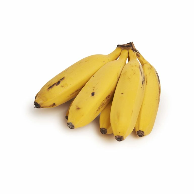 Lady Finger Banana Seedlingcommerce © 2018 8063.jpg