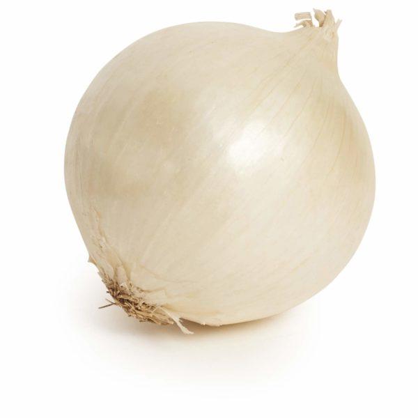 White Onion Seedlingcommerce © 2018 8010.jpg