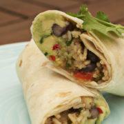 rice burritos guacamole nicholas duell © 2020 blog dsc 0869