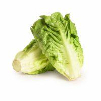 Cos Lettuce Seedlingcommerce © 2018twin Pack Dsc 8310.jpg